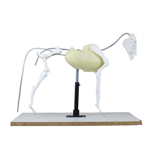 Tru Form Armature - Equine Pro Rigid Armature System 1/6 Scale-0