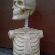 The Bonehead Armature (Life Size) by The Monster Makers for Sculpting and Creature Design