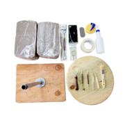 Jordu Schell Kit Human Head Anatomy