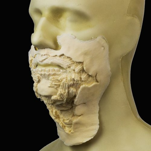 Rubber Wear Large Zombie Mouth 2 FRW-116