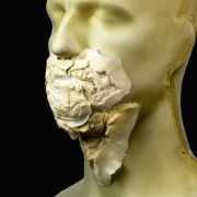 Rubber Wear Small Zombie Mouth FRW-114